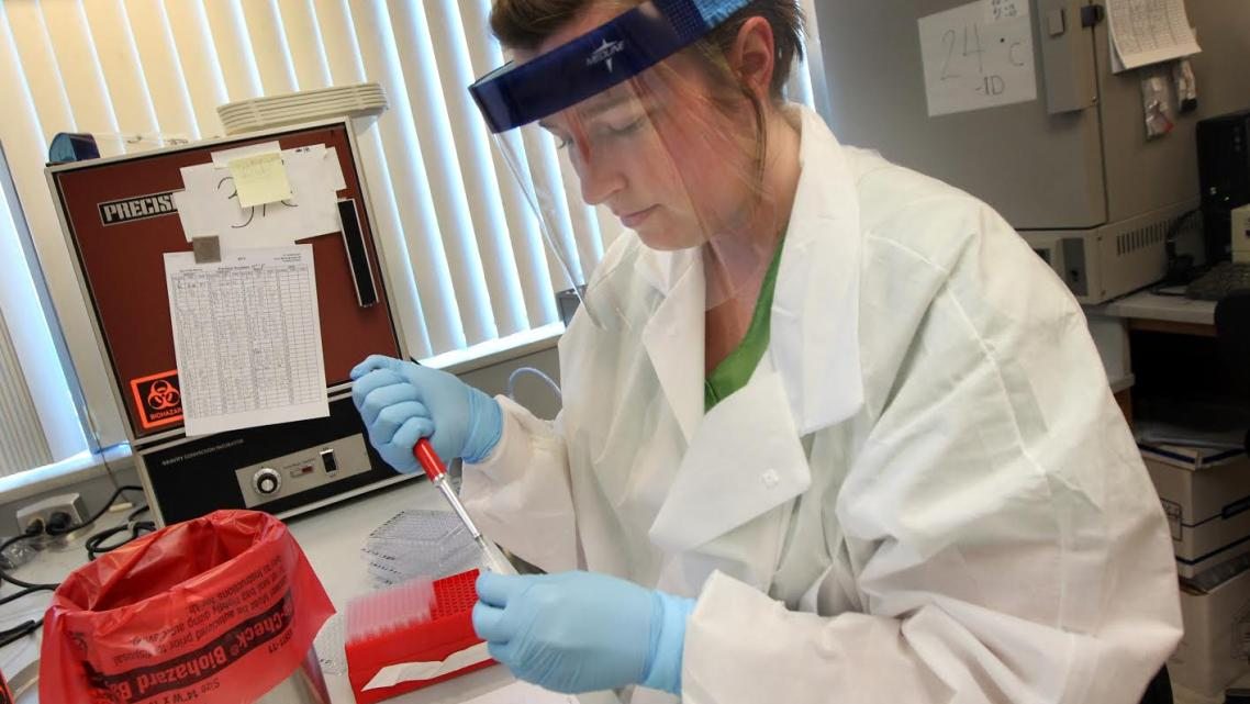 Lab Assistant Erin Scott with the Kern County Public Health Services Department places valley fever patient samples into test tr