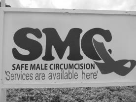 Safe Male Circumcision