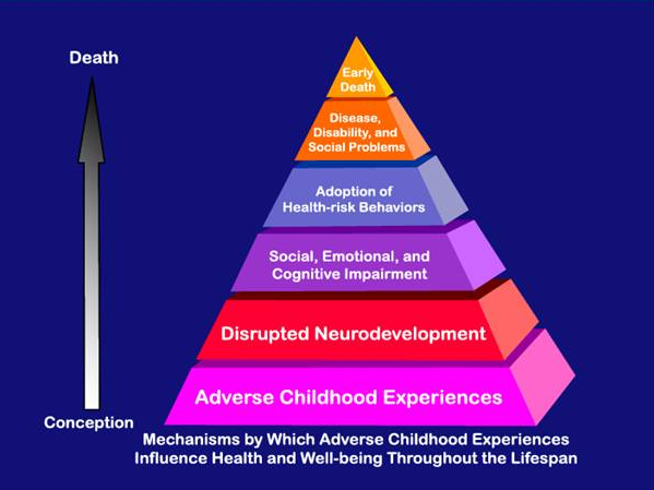 the different factors affecting a child to become a criminal The factors affecting grade school performance of students with preschool education i believe is highly influences the different factors that affect the academic performance of the filipino youth in their growing years and economic development.