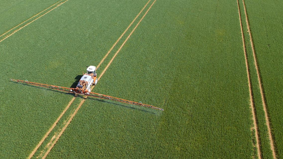 A Pesticide the EPA Won't Ban Is Sickening Low-Income Californians of Color