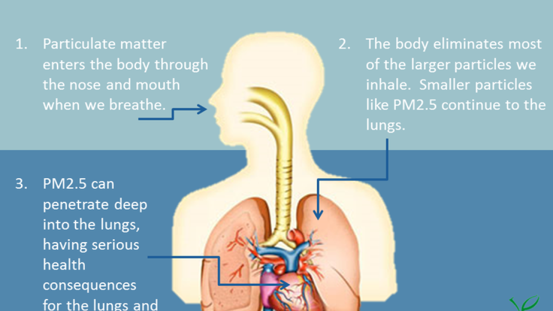 Particulate matter or particle pollution is a combination of solid particles and liquid droplets that are small enough to reach