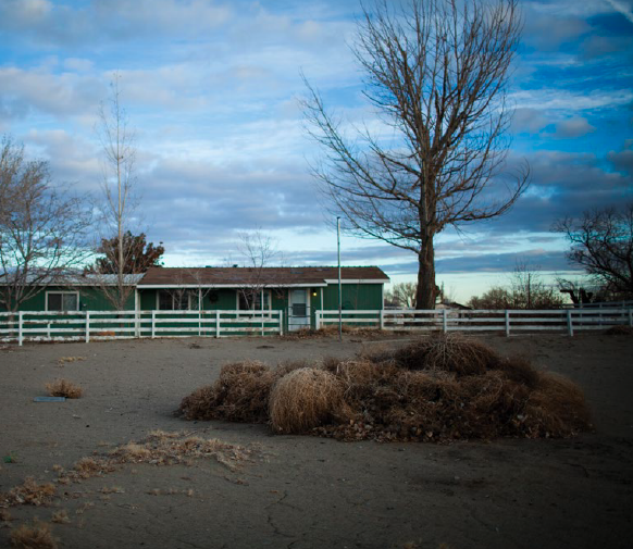The former Brune home on Briggs Lane in Fallon, vacant between renters, and surrounded by tumbleweeds.