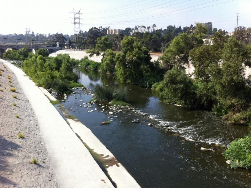 Soft-bottom stretch of the Los Angeles River in Atwater Village. Photo by Philip Graitcer