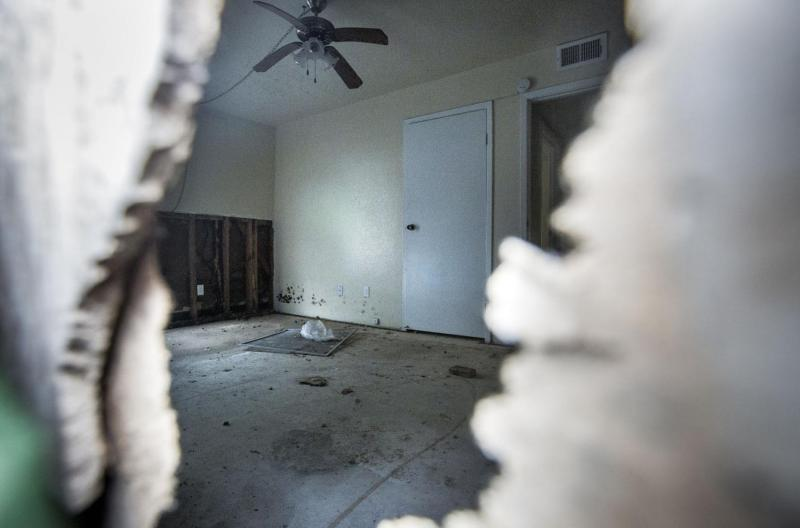 Black mold was evident at an Autumn Park apartment through a hole in the exterior wall Feb. 20, 2018. Some of the apartment buildings in the complex are still unlivable more than a year after Hurricane Harvey.