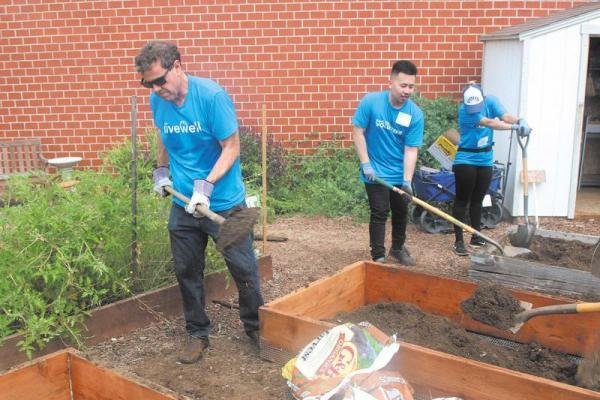"""BCHD CEO Tom Bakaly shovels soil during BCHD's Volunteer Day. As a former city manager, he said that """"quality of life"""" used to mean road and traffic problems. Now, the shift is toward resident well-being. Photo by David Mendez"""