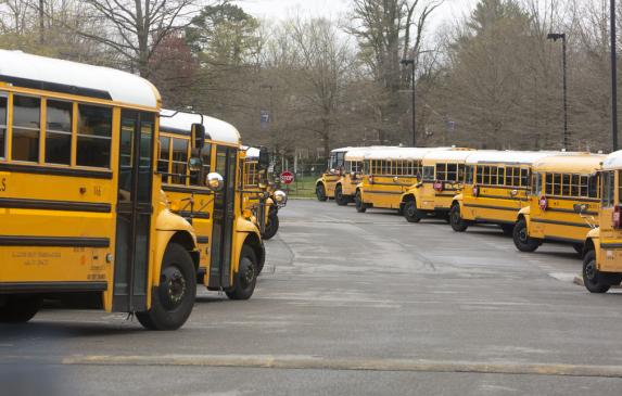School buses lined up in parking lot