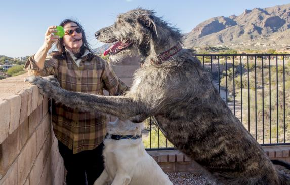Jacquie Green plays with her dogs Maggy and Jack at their foothills home in Tucson, Ariz. Maggy, the wolfhound, has had valley f